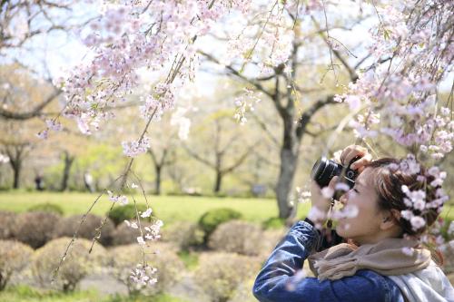 Women-in-garden-with-camera